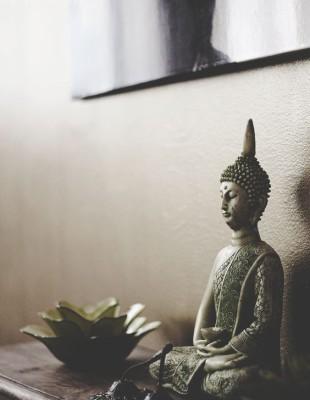 Terapia Vibracional Schaki
